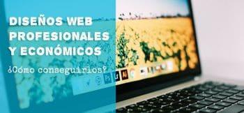 Diseño de sitios web baratos y profesionales